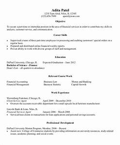 9 entry level resume examples pdf doc free premium With entry level finance resume