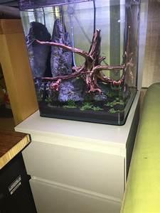 Aquarium Unterschrank Ikea : frage zu ikea kallax als unterschrank f r zwei 30x30x35 cubes aquarium forum ~ A.2002-acura-tl-radio.info Haus und Dekorationen