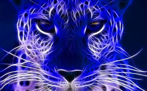 blue electric cats animals background wallpapers