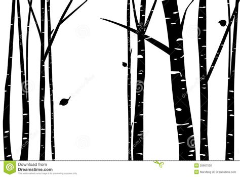 aspen forest silhouette light birch tree vector birch grove with falling leaf silhouette by ma meng u cameo