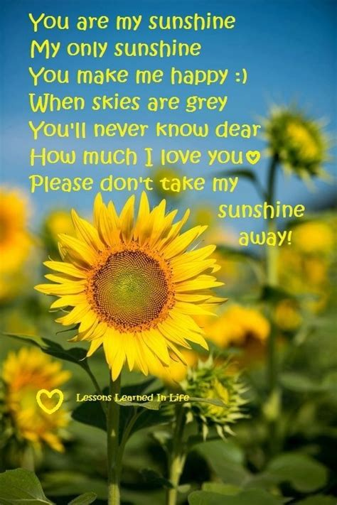 sunflower sayings  quotes quotesgram