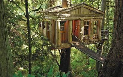 Treehouse Pete Nelson Masters Builder Must Beginning
