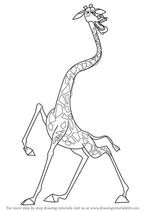 learn   draw melman  giraffe  madagascar