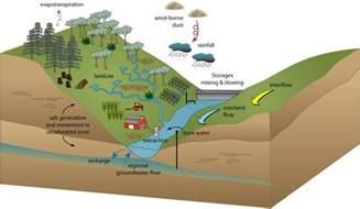 Aquatic Ecosystems Examples