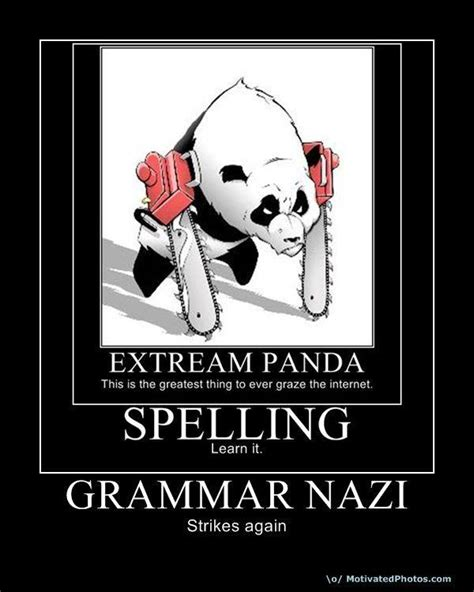 Grammer Nazi Meme - unlimited power memes