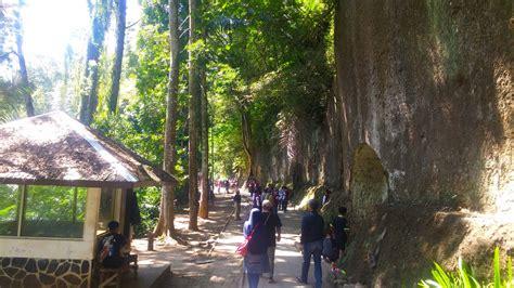 menjelajahi alam taman hutan raya ir  djuanda bandung