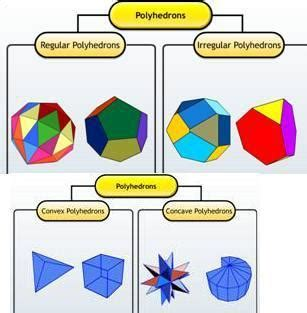Introduction To Three Dimensional Shapes  Free Homework Help