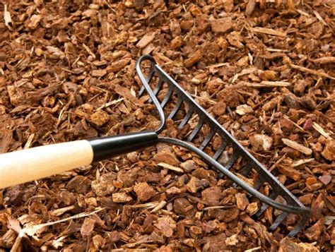 mulch  repelling bugs thriftyfun