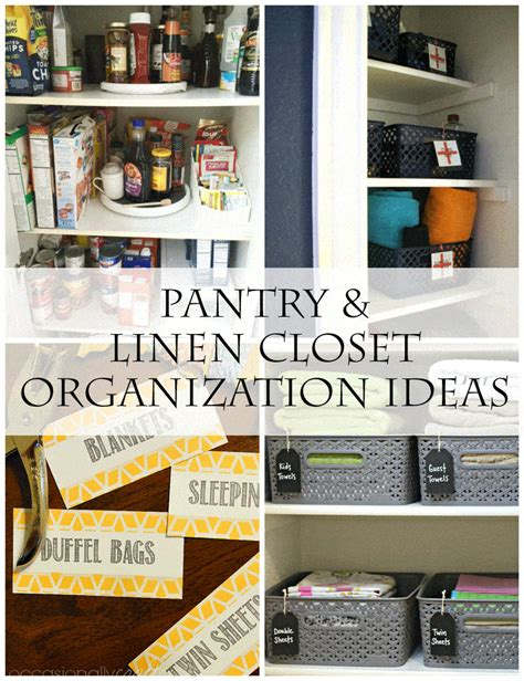 Closet Organization Project Ideas by Pantry Organization Ideas