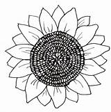 Sunflower Coloring Pages Printable Flower Flowers Sunflowers Head Para Patterns Round sketch template