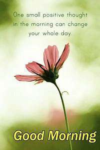 Positive Thoughts Good Morning Quote | Favorite Quotes ...