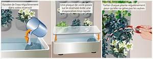 Comment Tailler Les Orchidées Pour Qu Elles Refleurissent : comment faire un mur v g tal ~ Melissatoandfro.com Idées de Décoration