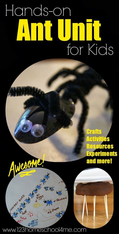 25 best ideas about ant crafts on ant insect 811 | a3abd3caf7f014c41d3d9cc9fbdb2123 activities for toddlers preschool ants theme