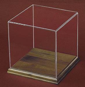 Square Plastic Display Case With Wood Base