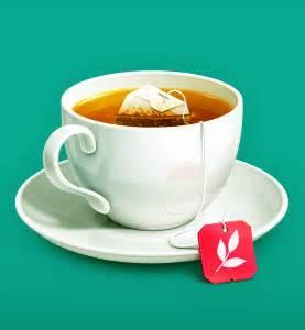 咖啡圈里的那杯茶 -科学松鼠会-财新博客-新世纪的常识传播者-财新网