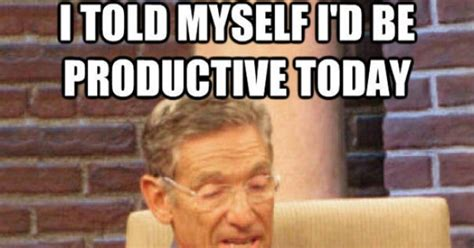 Maury Povich Memes - lying at work quotes quotesgram