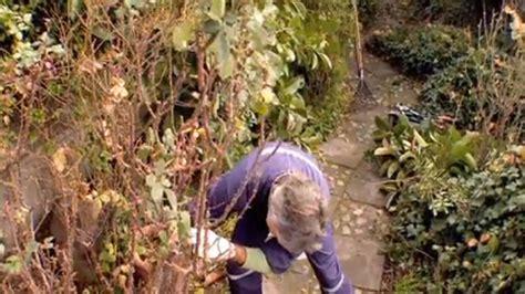 Hágalo Usted Mismo  ¿cómo Limpiar Y Recuperar Un Jardín?