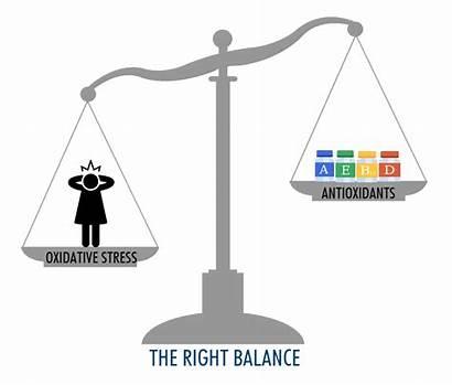 Stress Oxidative Antioxidants Radicals Imbalance Balance Cell