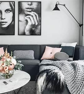 Salon Gris Et Rose : d co salon salon en gris et blanc tr s esth tique canap ~ Melissatoandfro.com Idées de Décoration