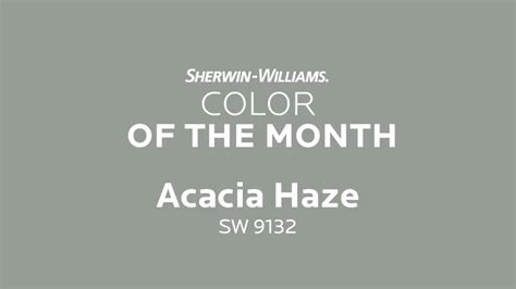 sherwin williams color   month february