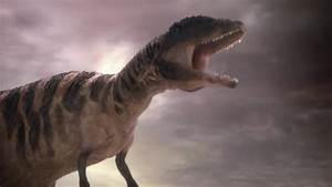 The Big Four Ranked - Dinosaurs Forum