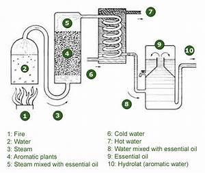 The Steam Distillation Process