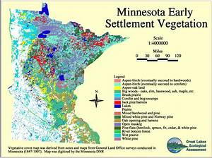 Minnesota Land Use And Cover  Historic