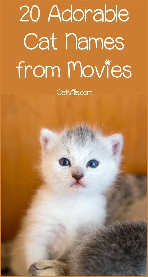 sweet cat names  movies  inspire  kitty cats