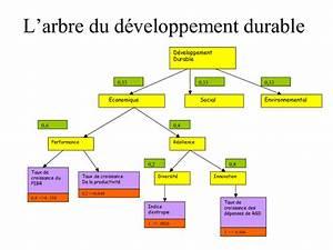 Arborescence Des Dimensions Et Des Indicateurs