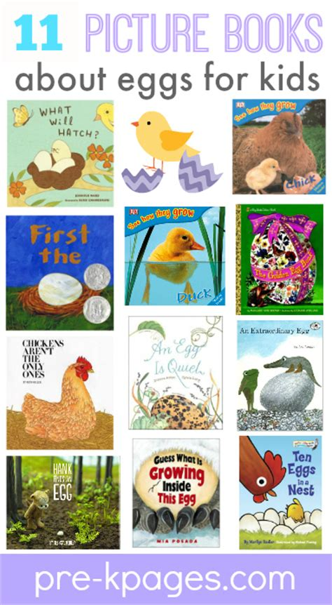 learning about eggs 384 | preschool books about eggs