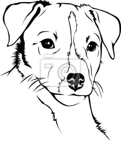 bild parson jack russel terrier poster und