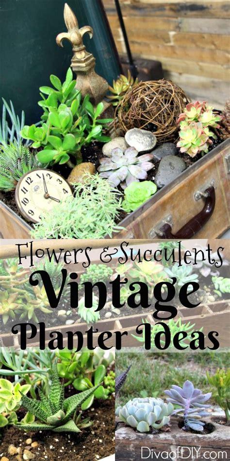 unique flower planter ideas  flowers  succulents diva  diy tutorials flower planters