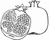 Anar Clipart Coloring Colorare Melograno Disegni Pomegranate Clip Station Bambini Popular sketch template
