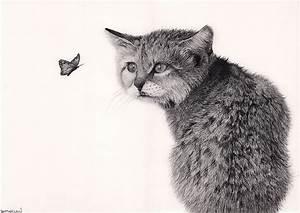 Weißer Wurm Katze : fotos von katze schmetterlinge schwarzweiss tiere gezeichnet wei er ~ Markanthonyermac.com Haus und Dekorationen