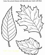 Coloring Leaves Tropical Pages Printable Getcolorings Print sketch template
