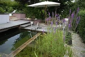 Sichtschutz Für Kleine Gärten : schwimmteiche berliner g rten berlin brandenburg ~ Sanjose-hotels-ca.com Haus und Dekorationen