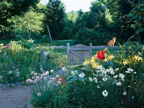 backyard landscaping ideas save money creating