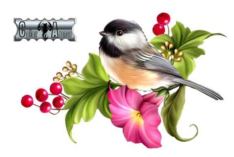 render oiseau fleur fruit oiseaux animaux png image