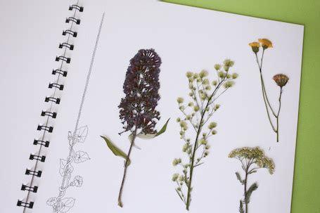 In der modernen geschäftswelt werden etiketten nicht nur zu der identifizierung des produkts oder materials, sondern auch zu marketingzwecken verwendet. Herbarium Vorlage Zum Ausdrucken
