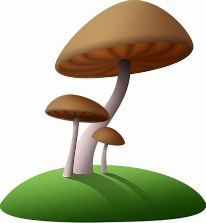 Fungus Giant Clipart Screen Cartoon Mushroom Clipground