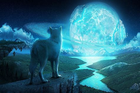 wolf  crashing blue moon wallpaper printed wall paper