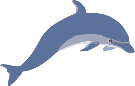 Dolphin Clipart Dolphin Clip Free Vector In Open Office Drawing Svg