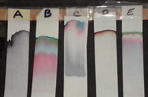 Ink Chromatography | Mad About Science