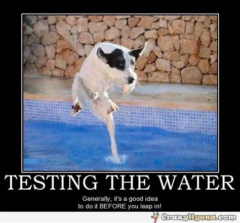 Testing the water.
