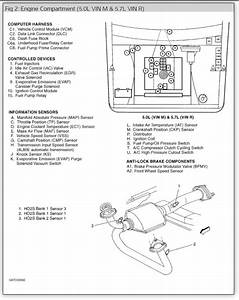 Diagram  Chevy Fuel Pump Relay Wiring Diagram 1997 Full Version Hd Quality Diagram 1997