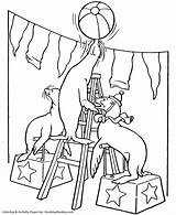 Circus Coloring Animals Animaux Printable Coloriage Cirque Ausmalbilder Colouring Seals Tent Animal Clown Fasching Clipart Robbe Activity Performing Sheets Train sketch template