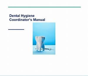 Dental Hygiene Coordinator U0026 39 S Manual  U22c6 As The Drill Turns