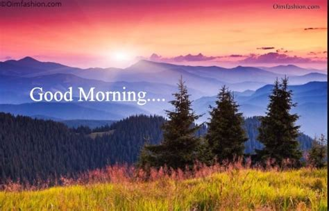 hd good morning wallpapers flowers coffee sunrise
