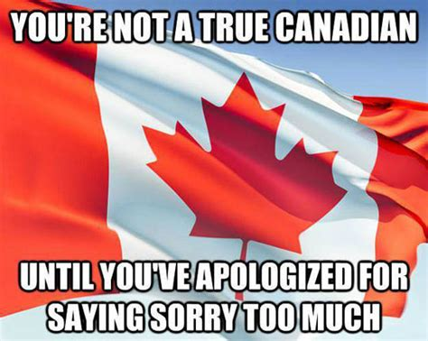 Canada Day Meme - the true canadian the meta picture