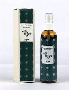 Parfum D Ambiance : parfums d ambiance flavien gcat ~ Teatrodelosmanantiales.com Idées de Décoration